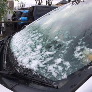 初雪 -2019年末-