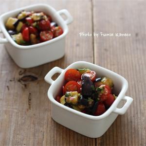 トマトと茄子のスパイシーサラダ