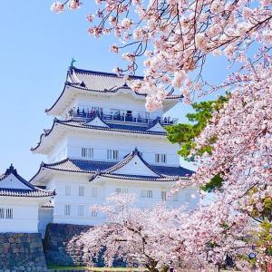 春の箱根温泉旅行