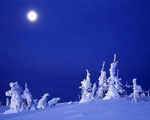 ●冬の養生ケア 温めながら守り活性させてバランスを整えましょう