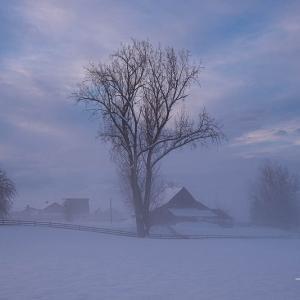 霧中に立つ