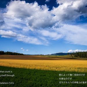 聖句入りカレンダー #2