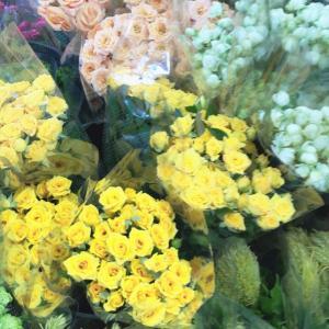 今更だけれど、今日、ふと思った。私がお花を好きな理由の1つ^^波長は大切