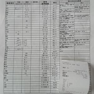 7月22日 蛋白漏出性腸症と診断される