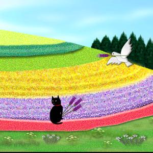 憧れのラベンダー畑♪
