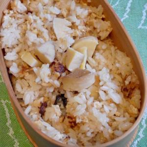 筍ご飯と鮪の腹身入り野菜炒め弁当