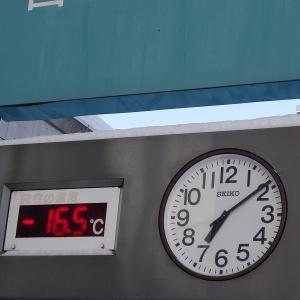 今朝の札幌、冷え込みました。