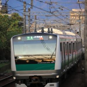 川越車両センターE233系 祝・相鉄線直通(^o^)/ 神奈川県へようこそ♪