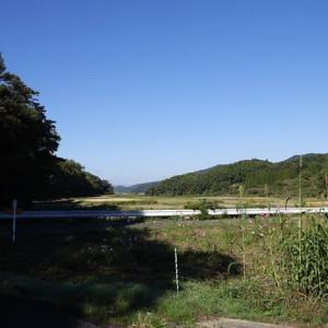 湧水珈琲_いや川水源