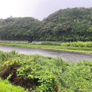 7月16日 雨