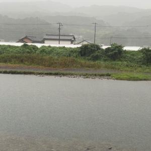 9月17日(金) 雨