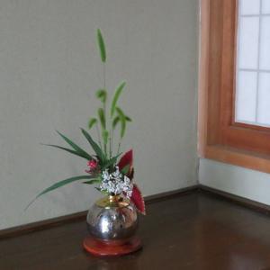 エノコロソウとコリウス(金襴紫蘇)の小品花
