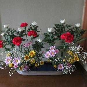お盆を迎える花畑