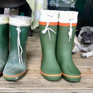 3足目の庭用長靴