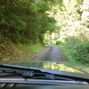 ジムニーで小郡鍛冶畑林道~三谷森林公園まで、と、サラダにサラダ?