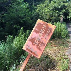 林道大田東山線を走るジムニー模様