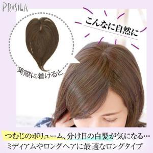 耐熱白髪かくしウィッグ広範囲タイプ(ロング)【ST-008】