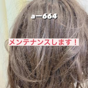 A-664 メンテナンス