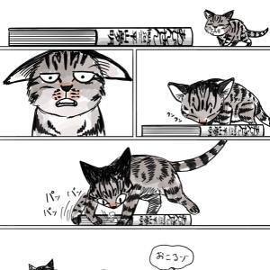 あむんぜん 平山夢明  集英社 2019年7月10日 第1刷発行