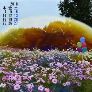 10月になりました(*^_^*)