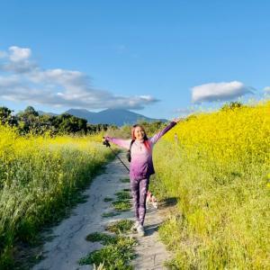 おかげさまでChandra Yoga 15周年 【極楽浄土ハイキング】行きませんか?