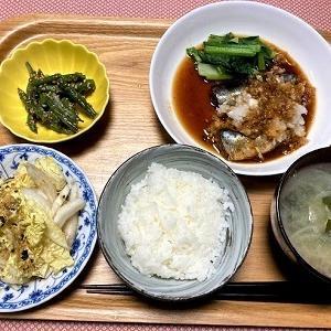 今日の夕食 TOKOI松岡の「白菜のおつまみサラダ」