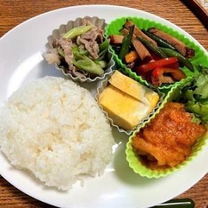 今日の昼食 豚肉と長ネギの塩味炒め
