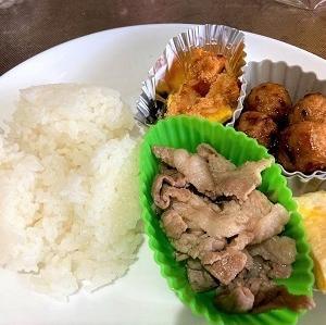今日の昼食「豚肉とミョウガの塩炒め」など