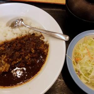 <gourmet>松屋 オリジナルカレー+生野菜