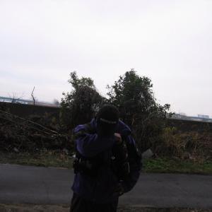 名古屋港・貯木場に前打ち釣行