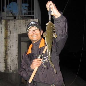 2020・4・7・ナマズ釣行 IN 蟹江川