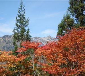 秋キャンプ♪ 合掌の森 中尾キャンプ場