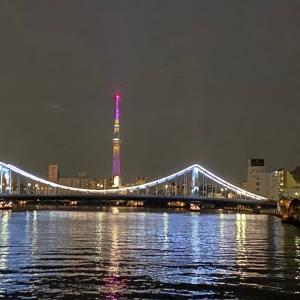 東京の夜景は美しい〜@屋形船