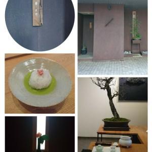 博多の茶館を訪ねました♪
