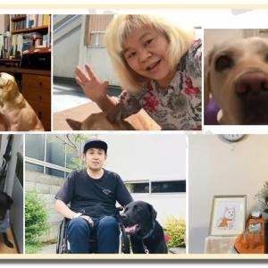 2020「ほじょ犬の日」啓発動画!