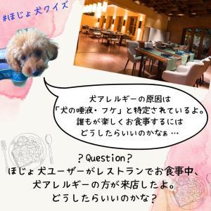 「補助犬クイズ15」に挑戦!