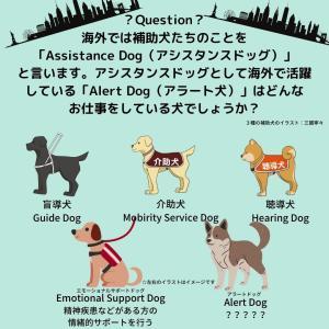 「補助犬クイズ26」に挑戦!
