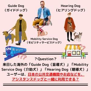 「補助犬クイズ27」に挑戦!