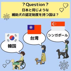 「補助犬クイズ44」に挑戦!