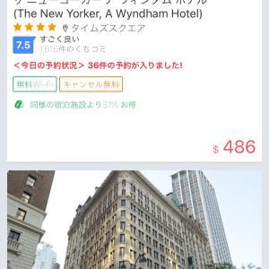 予想外のニューヨーク旅行 子連れ旅(´∀`)