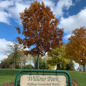 公園に行こう❤︎ Willow Park