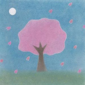 最近撮った桜の写真
