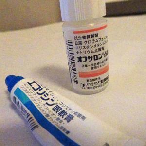 乳飲み子の目の治療!