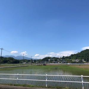 グンマ―通勤 (=´▽`)