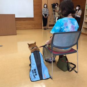 ふれあい活動犬認定式と保護犬同窓会