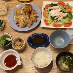 餃子2日め