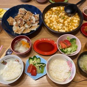 麻婆豆腐と餃子