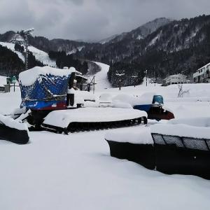 立山山麓は雪