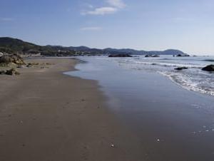 入野の砂浜@黒潮町