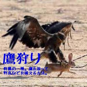 「SMBC日本シリーズ2019」第3戦【ソフトバンク6-2巨人(東京ドーム)】の件〓